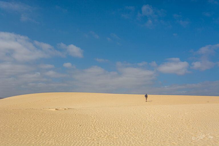 The Dunes (FV-1a)