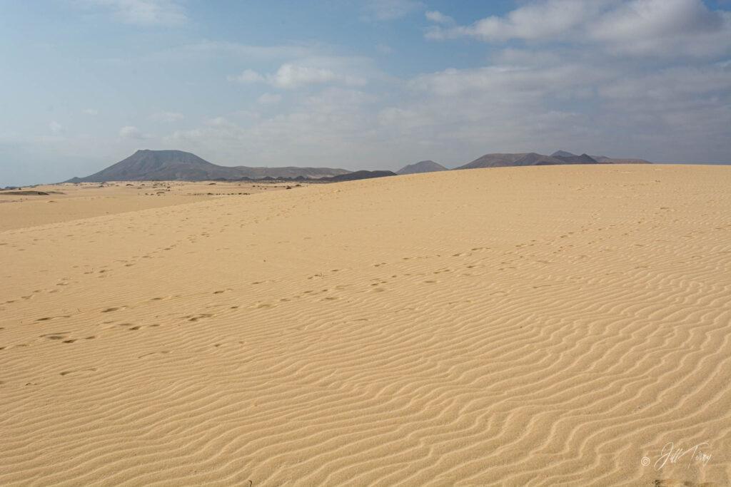 Corralejo Dunes 0327