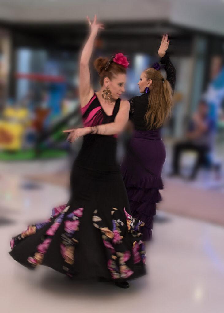 Flamenco DSC 0068